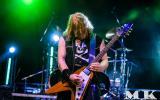 2015-Metal-For-Emergency-Festival-II_20.jpg